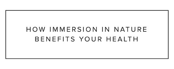 How immersion in nature benefits your health